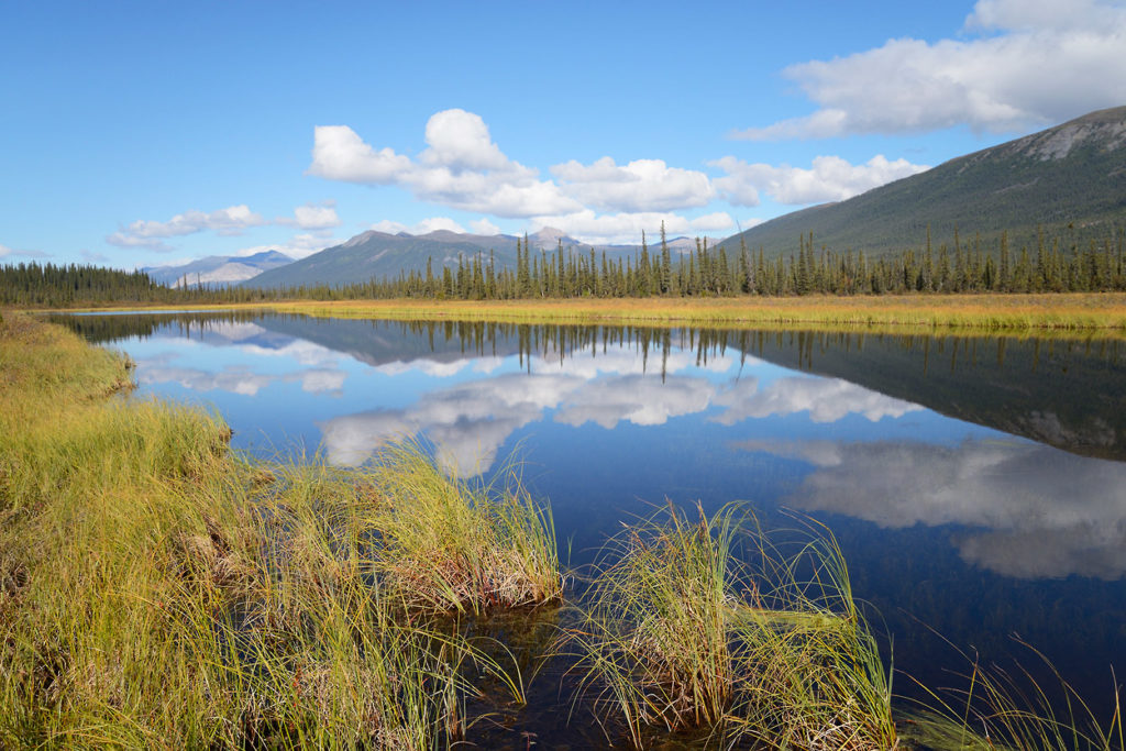 Guided hikes in Gates of the Arctic National Park old oxbow lake in Brooks Range Gates of the Arctic trips, Alaska.