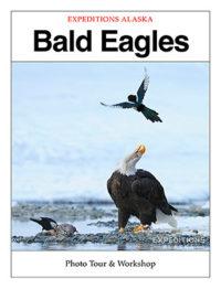 bald eagles photo tour trip ebook