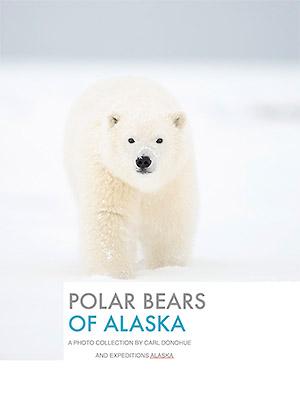 Polar bears of Alaska ebook button