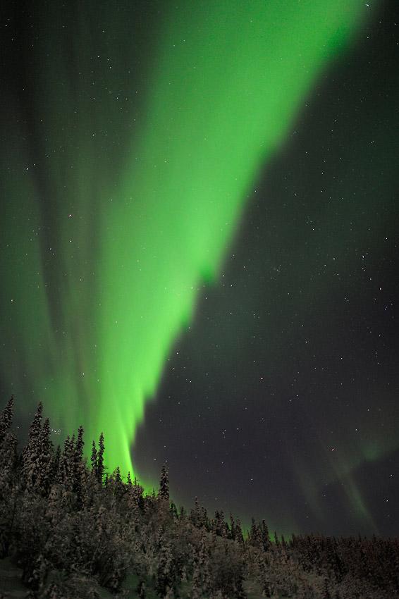 Aurora borealis photo tours in Alaska.