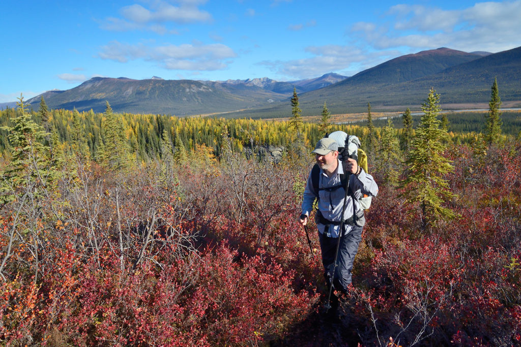 Guided hiking trips Arrigetch Peaks Fall color and gates of the Arctic National Park Arrigetch Peaks backpacking trip, Alaska.