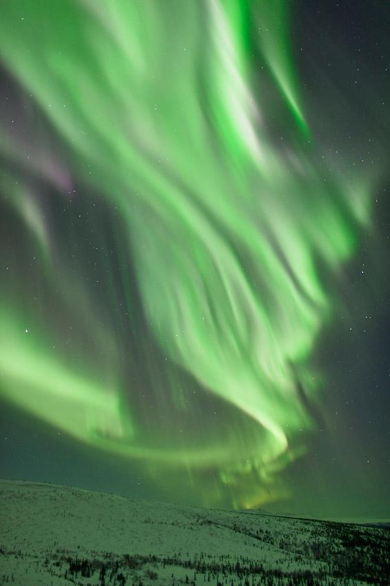 Alaska Aurora borealis photo tour vertical photo.