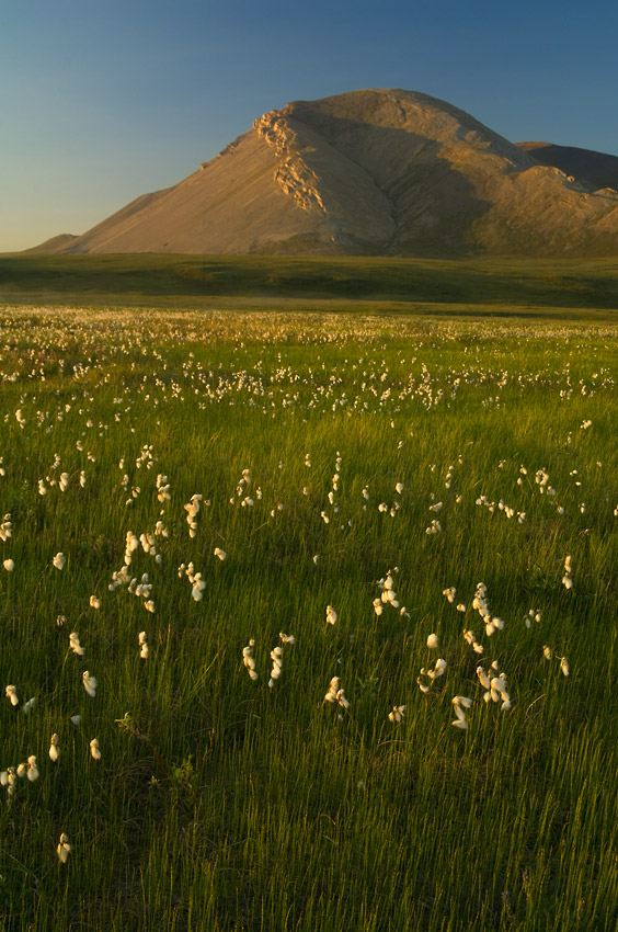 Mt Copleston Shublik Mountains ANWR, Alaska