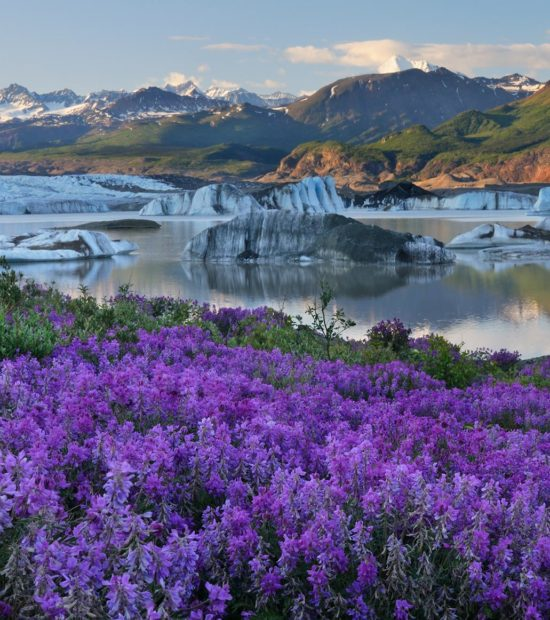 Expeditions Alaska yoga Retreat to Nizina Glacier, Wrangell - St. Elias National Park.
